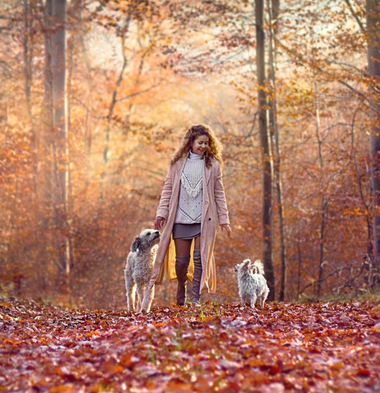 Tierfotografie Besitzerin mit ihren zwei Hunden